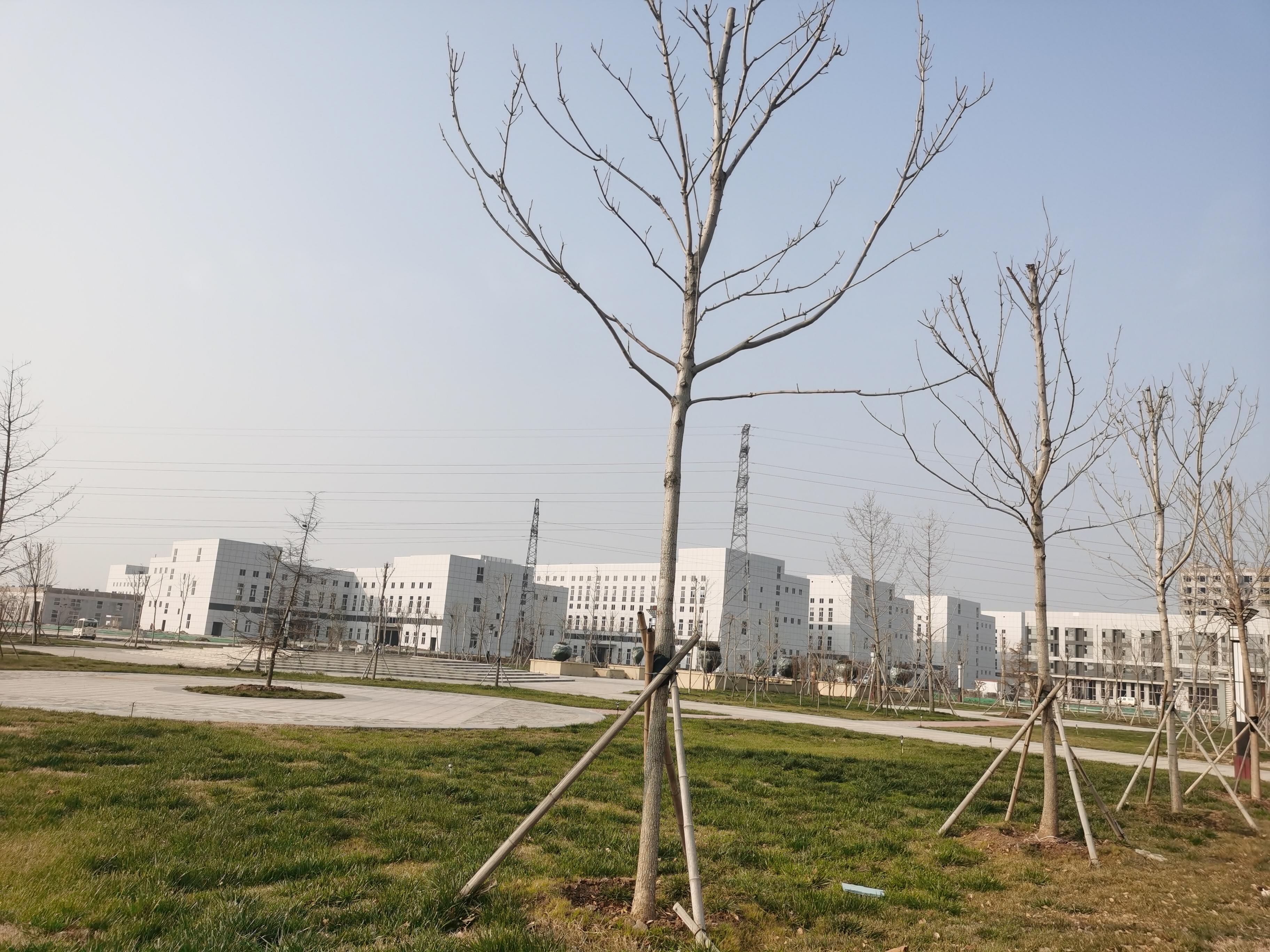 济北生命科技产业园-3